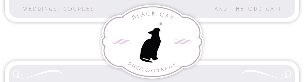 Black Cat Photography logo